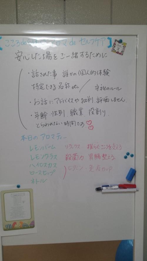 20151119_205348